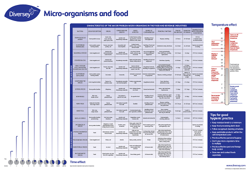 Micro organisms and food wall chart